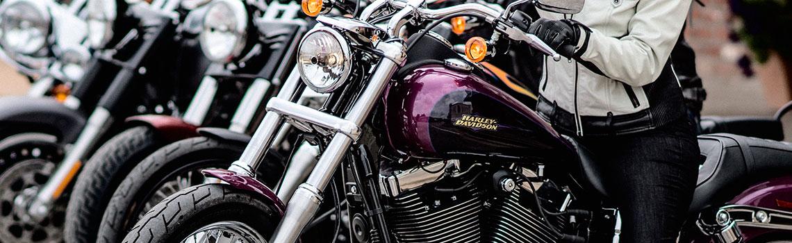 Harley Softail For Sale Encinitas Ca >> Harley-Davidson® Rental Fleet For Sale near Carlsbad, Encinitas, San Diego, Poway, Rancho Santa ...
